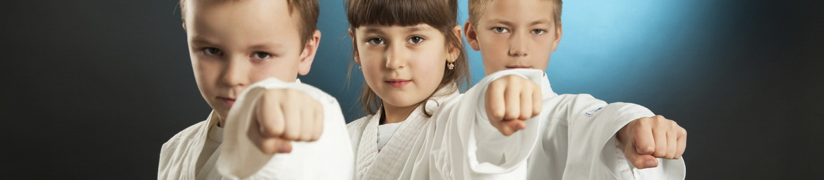 Lectii de karate